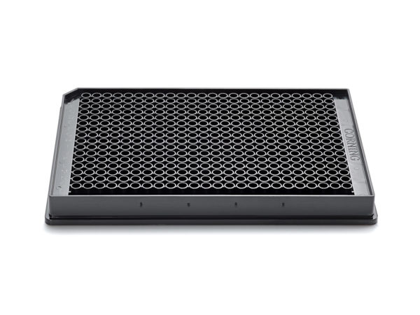 Corning 384 Well Plate